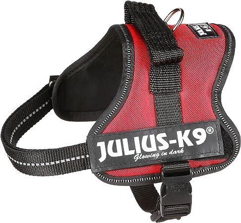 Julius-K9 Mini-Mini, 40-53 cm, Rojo: Amazon.es: Productos para ...