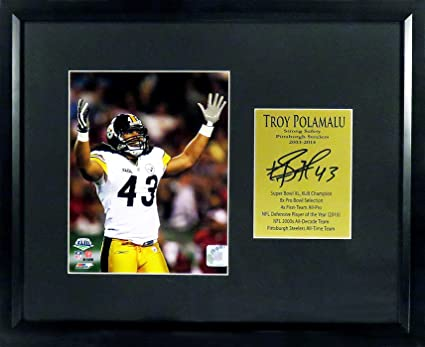 "b129c5dd9c7 Pittsburgh Steelers Troy Polamalu""Super Bowl Champion!"" 8x10  Photo Display (SGA"