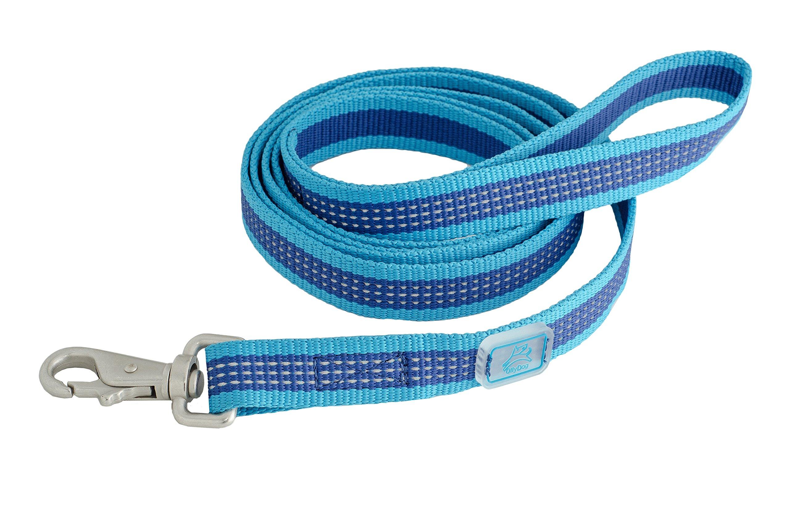 OllyDog MTN Reflective Leash, One Size, Aloha Blue