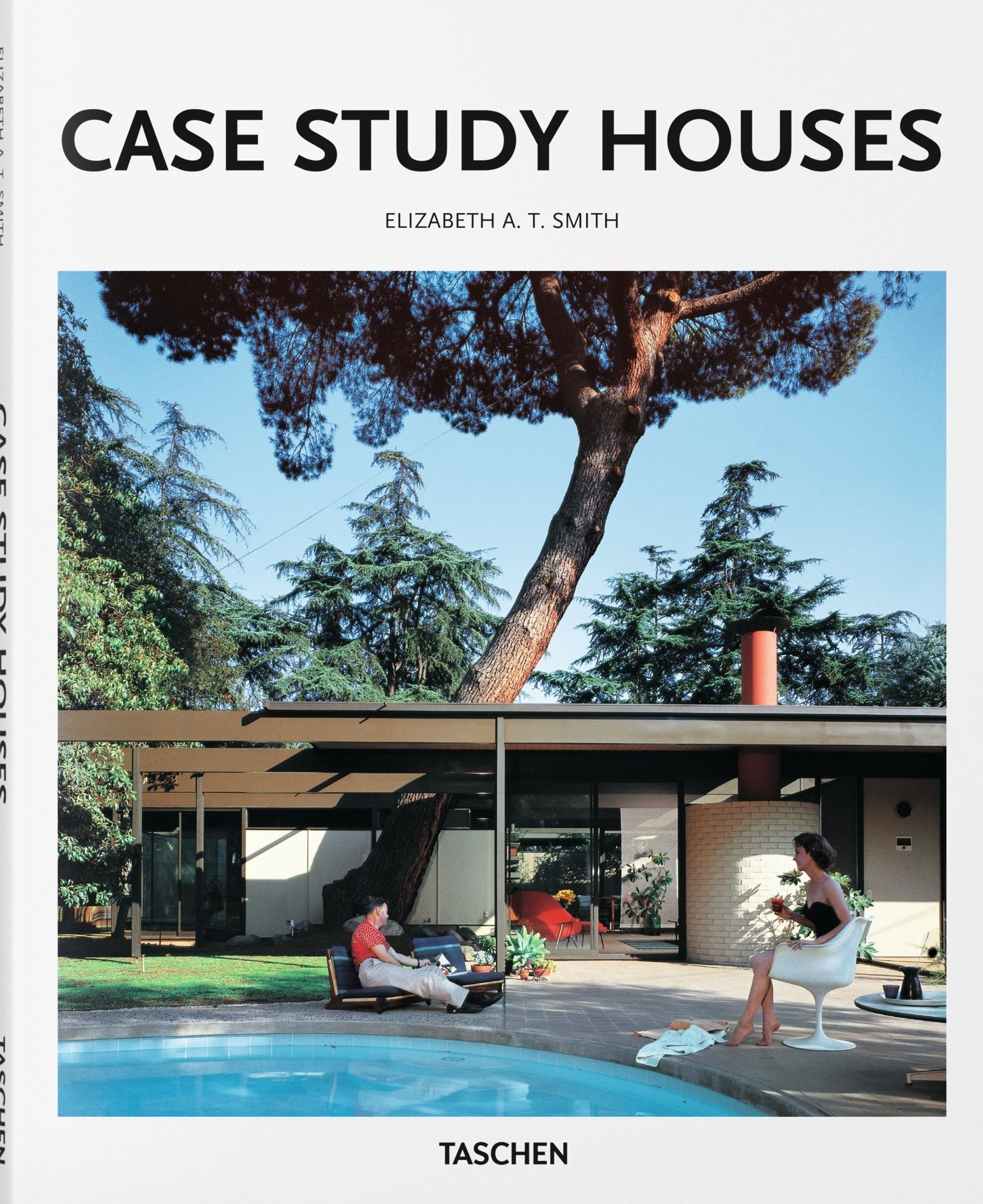 case study houses basic art series 2 0 elizabeth a t smith
