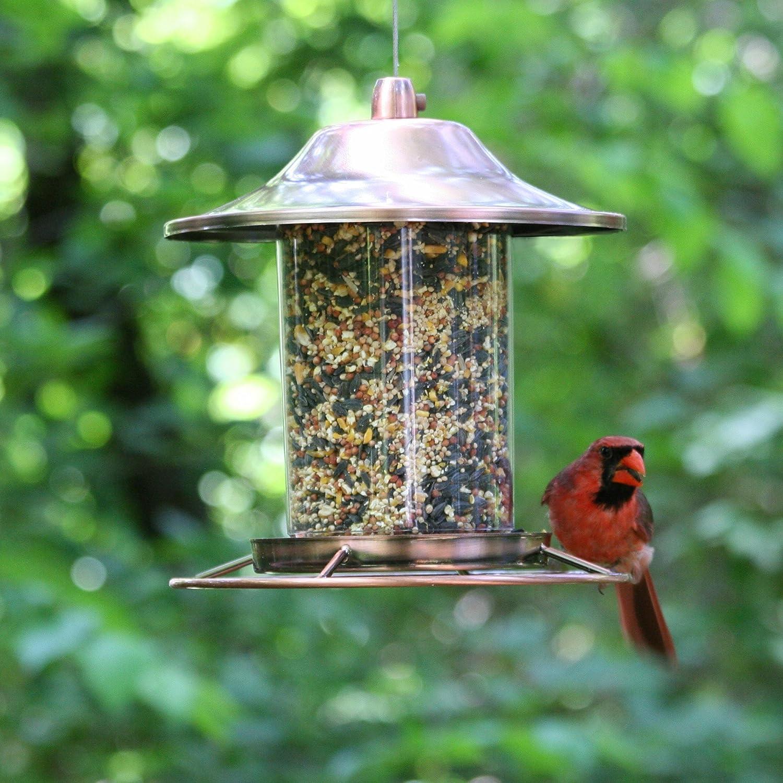 yankees droll garden feeder yankee feeders lifetime wildlife seed niger bird wild direct