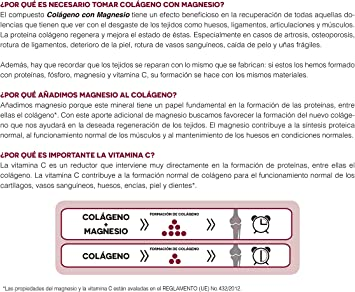 Ana Maria Lajusticia - Colágeno con magnesio – 450 comprimidos articulaciones fuertes y piel tersa. Regenerador de tejidos con colágeno hidrolizado tipos 1 y 2. Envase para 75 días de tratamiento.: Amazon.es: Salud y cuidado personal