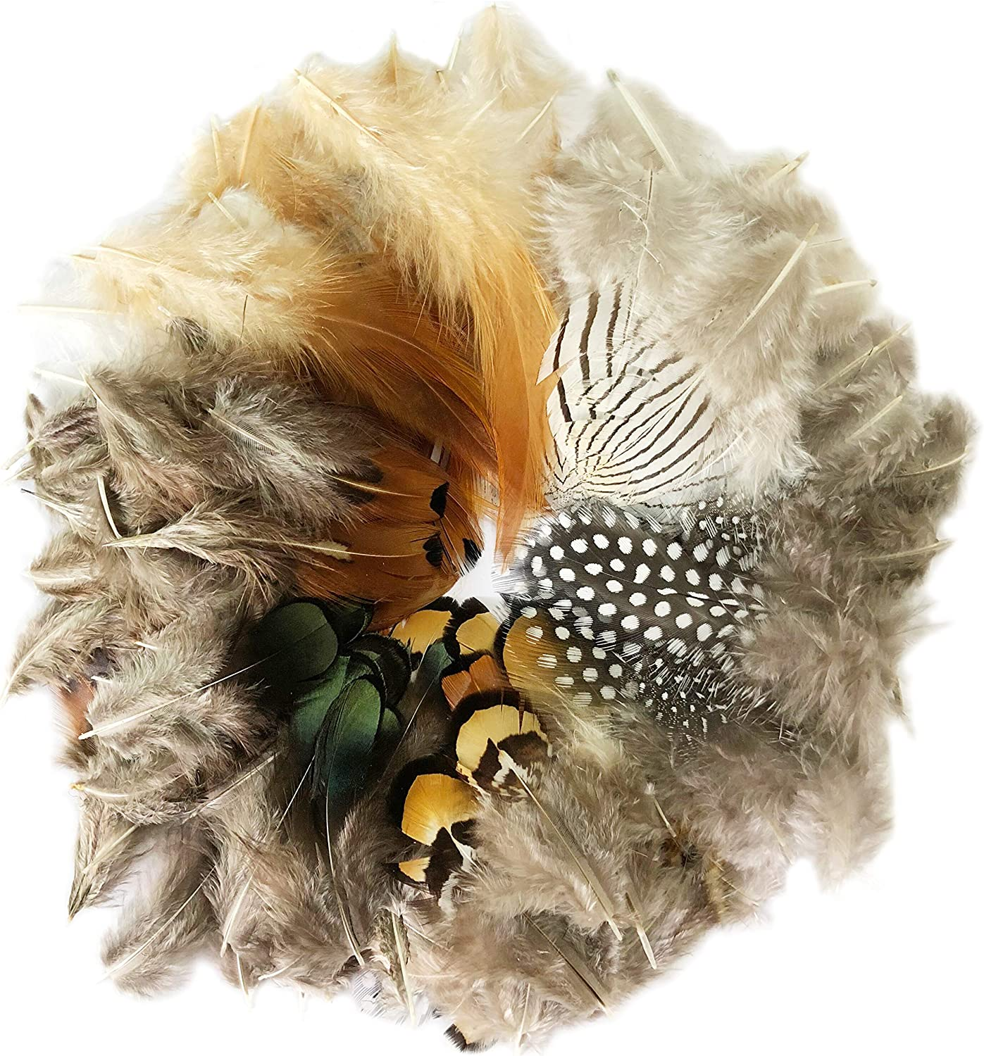 Benvo 120 Pcs 6 Styles of Feathers Assorted Nature Chicken Feathers for Arts and Crafts Projects Dream Catcher Decoration Party Dress-ups Hanging Garlands
