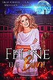 Feline the Burn (The Firehouse Feline Book 3) (English Edition)