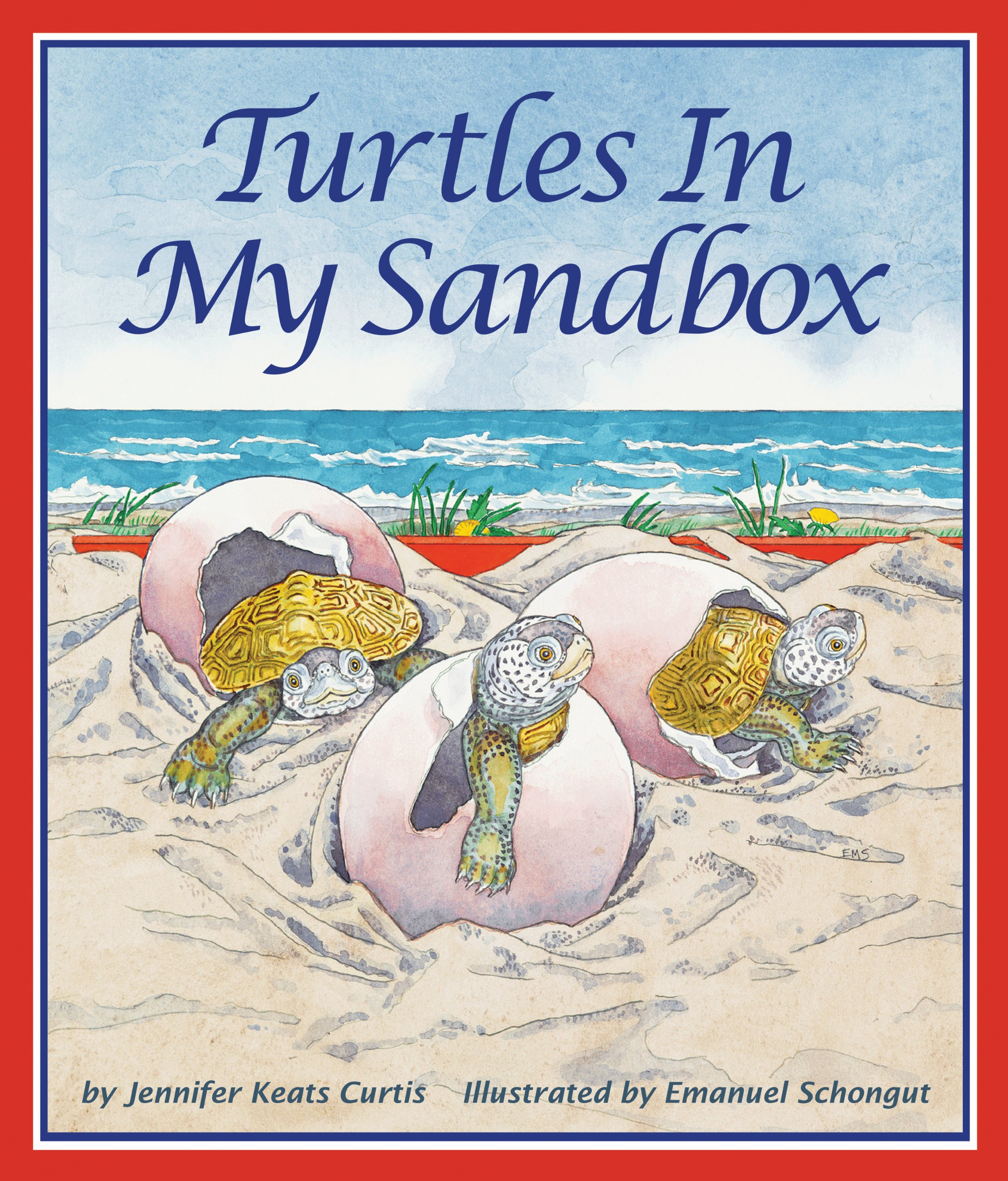 Turtles In My Sandbox: Jennifer Keats Curtis, Emanuel Schongut:  9781607181194: Amazon: Books