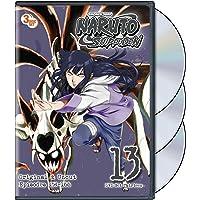 Naruto Shippuden Uncut Set 13 (ep. 154-166)
