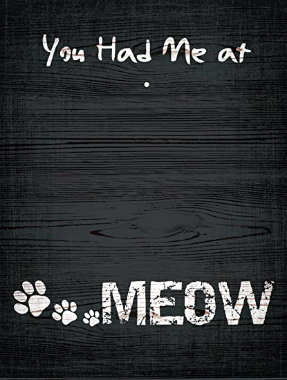 Amazoncom You Had Me At Meow Clip Frame Home Kitchen