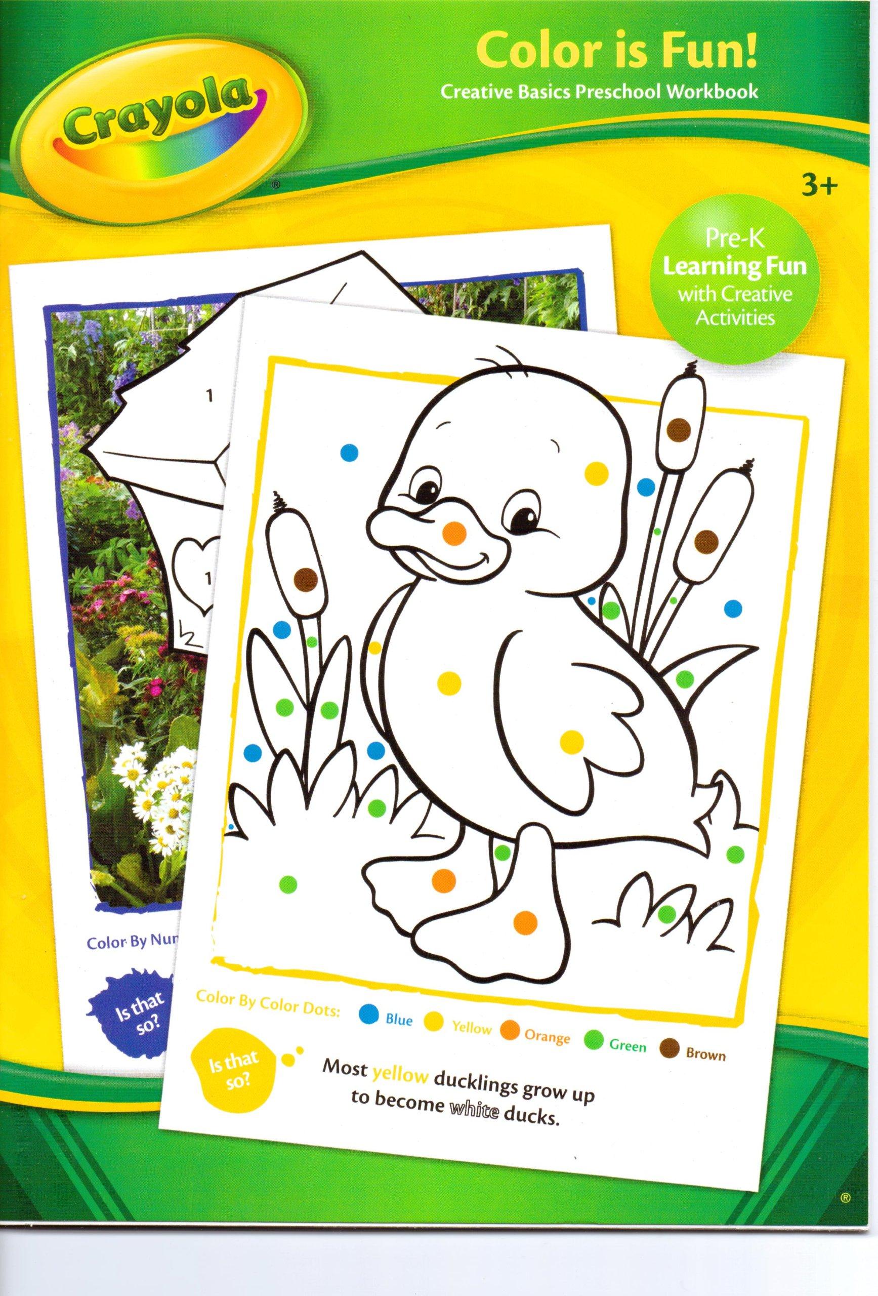 Crayola Color Is Fun! (Creative Basics Preschool Workbook): Crayola ...
