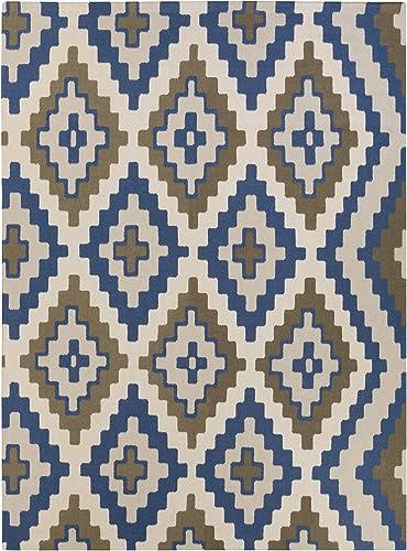 Surya Beth Lacefield Alameda AMD-1047 Hand Woven Wool Ikat and Suzani Area Rug, 8-Feet by 11-Feet