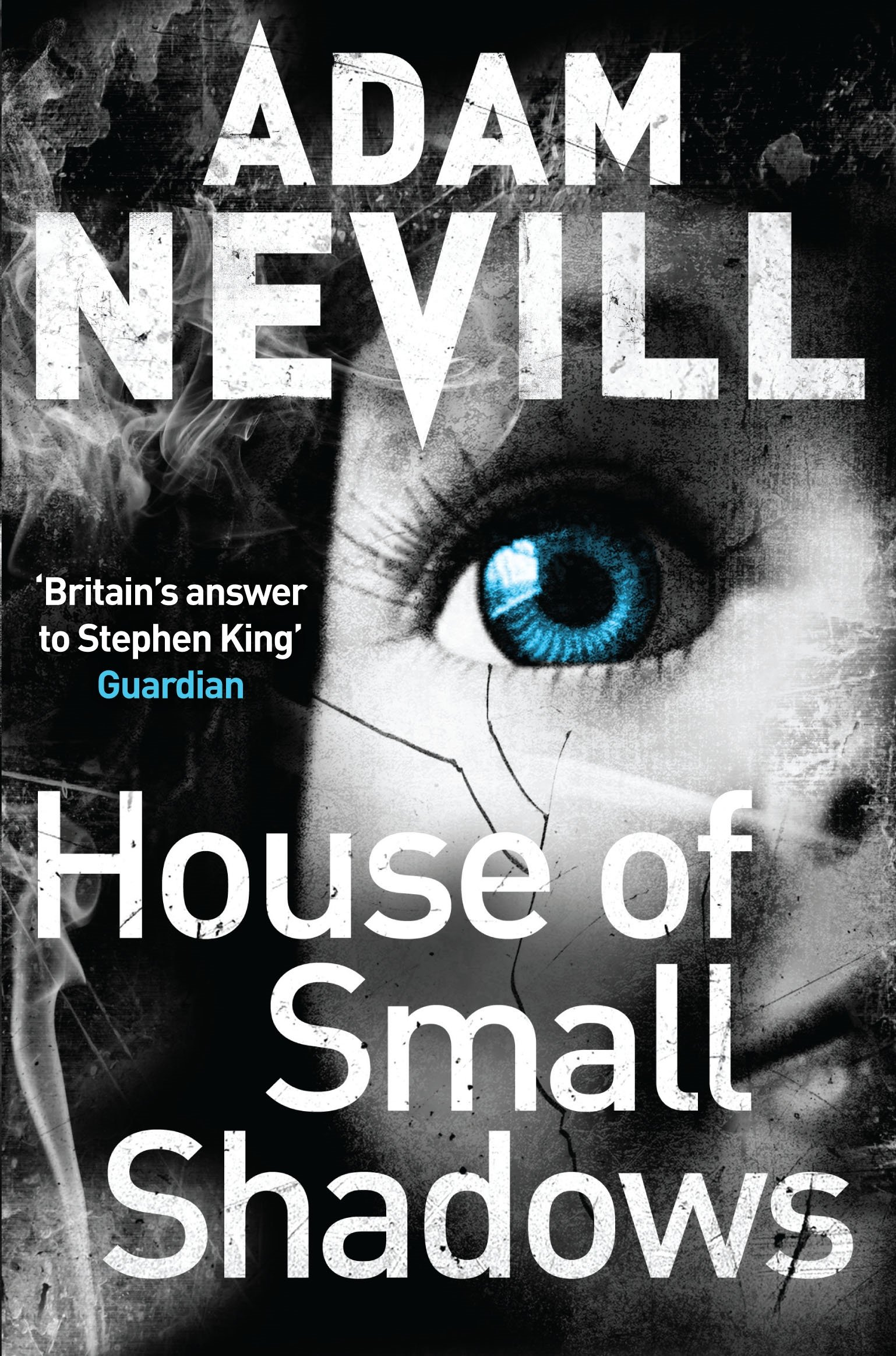Read Online House of Small Shadows pdf