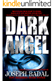 Dark Angel (Lassiter/Martinez Case Files Book 2)