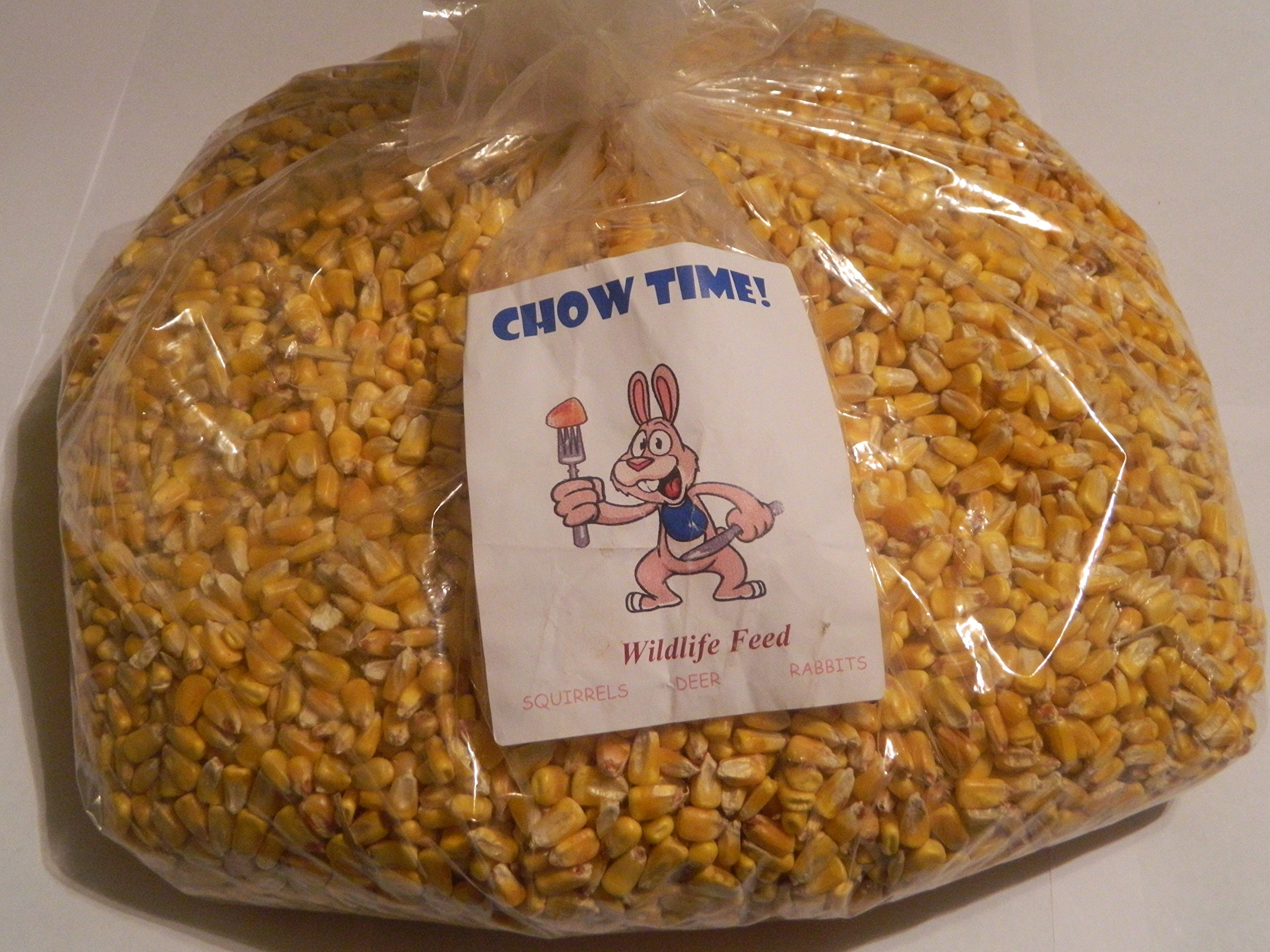 Chow Time! Squirrel Corn
