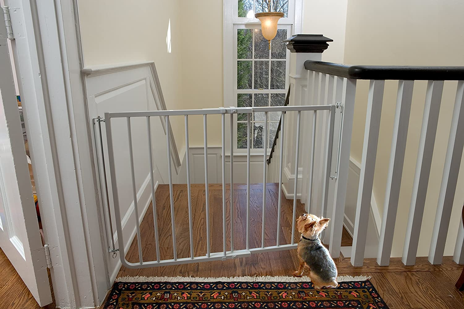 Wonderful Amazon.com : Cardinal Pet Gates Stairway Special Gate, White : Indoor  Safety Gates : Pet Supplies