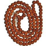 IndianStore4All 5 mukhi (Cara, panchmukhi) Rudraksha Loose 200 Rudraksh Bead