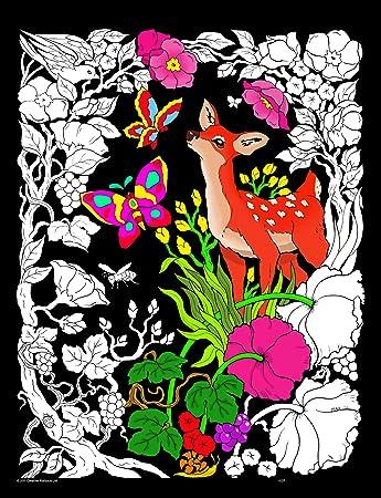 Amazon.com: Deer Forest - 16x20 Fuzzy Velvet Coloring Poster: Toys ...