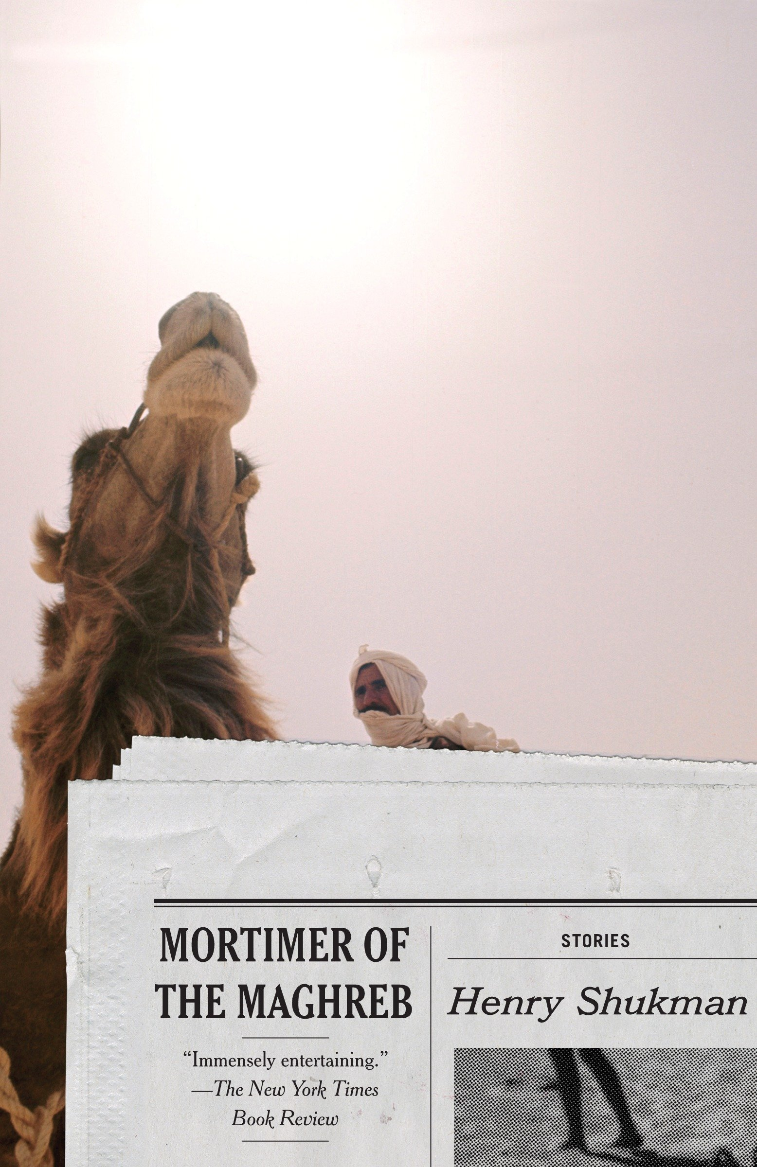 Download Mortimer of the Maghreb: Stories (Vintage Contemporaries) pdf epub