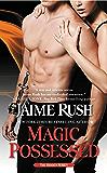 Magic Possessed: The Hidden Series: Book 2