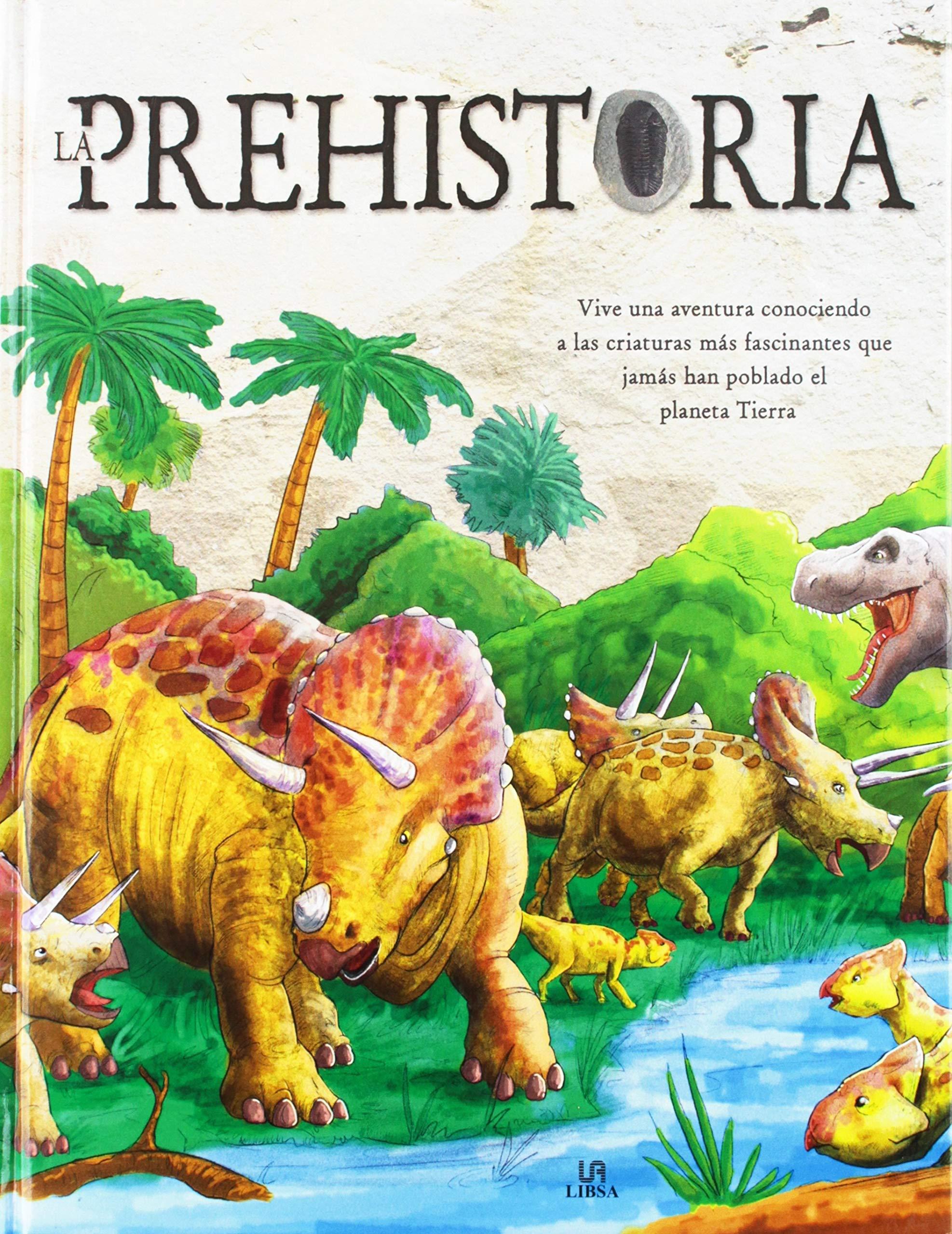 Prehistoria,La (descubriendo): Amazon.es: Equipo Editorial: Libros