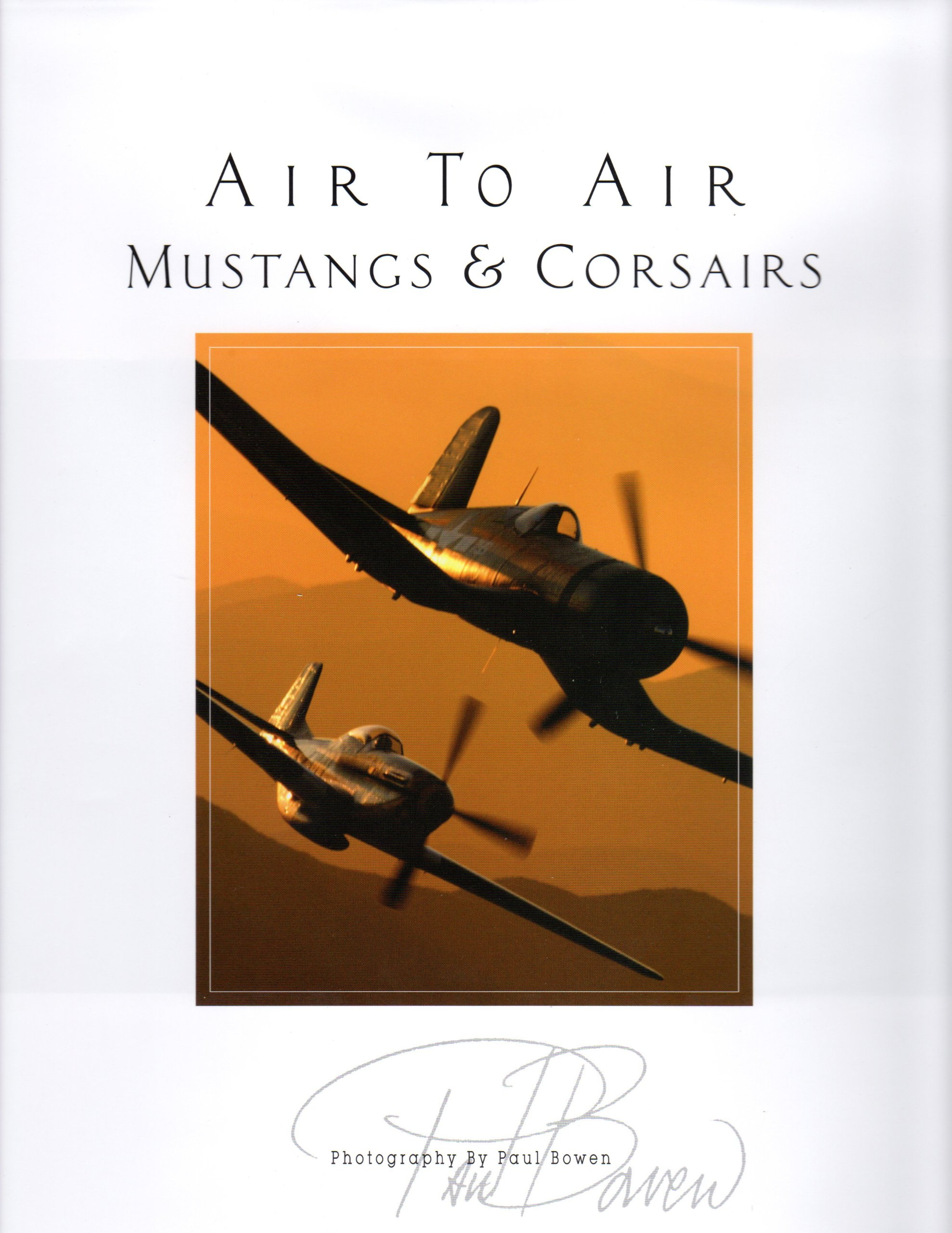 Air to Air Mustangs and Corsairs Volume IV pdf