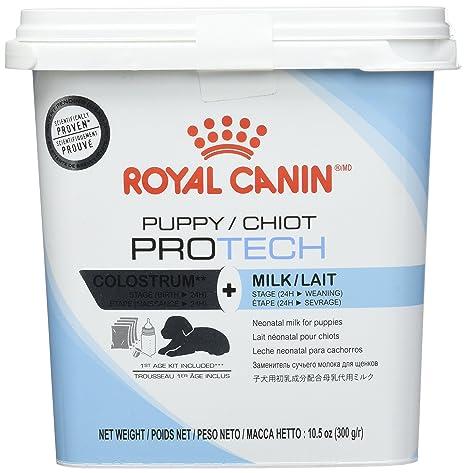 ROYAL CANIN Puppy Pro Tech Leche maternisé Comida para Cachorro