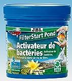 Jbl - Bactéries Pour Bassin Jardin - Filterstart Pond - 250 G