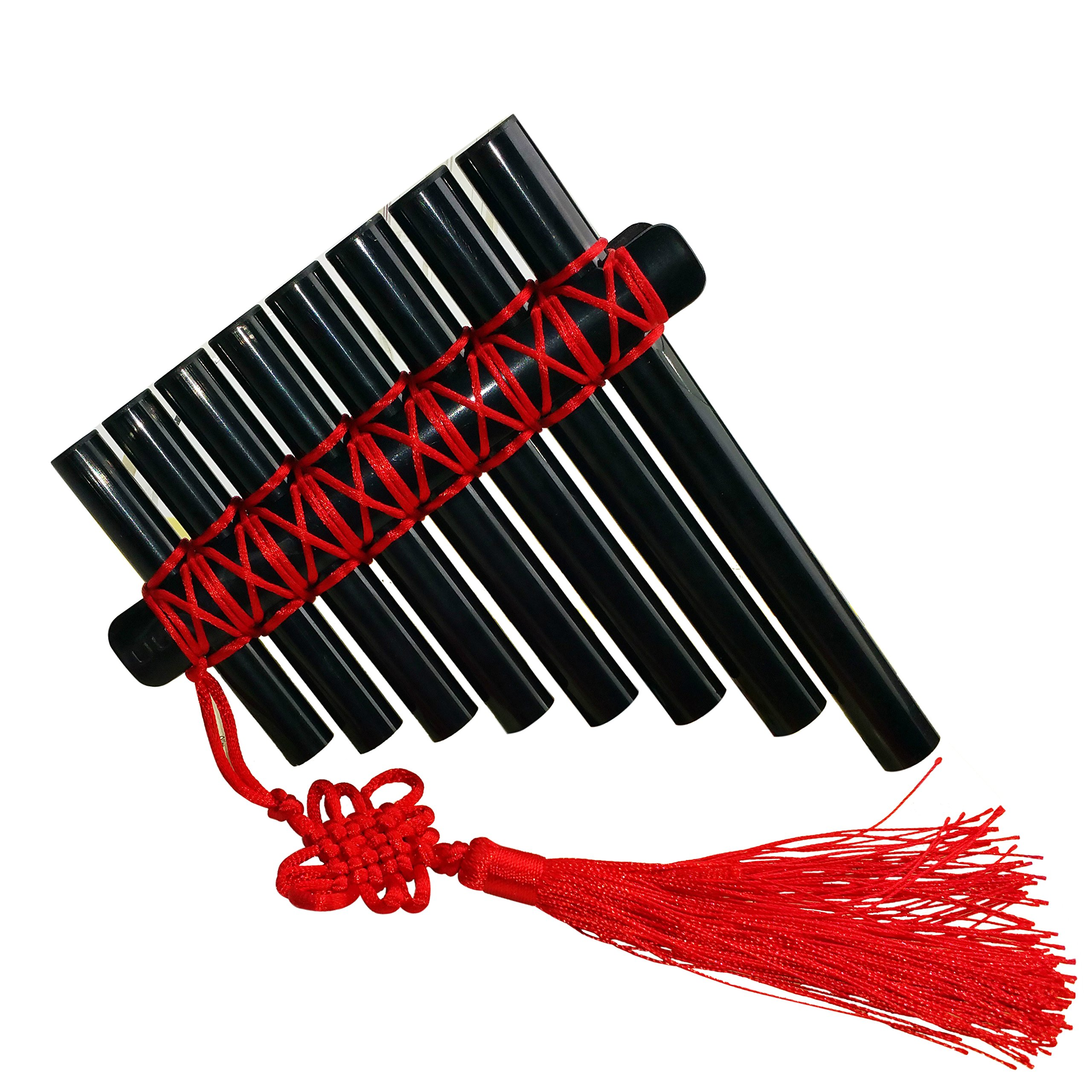 L'MS Panflute Plastic Panpipes Percussion Woodwind Instrument (Plastic-Black)