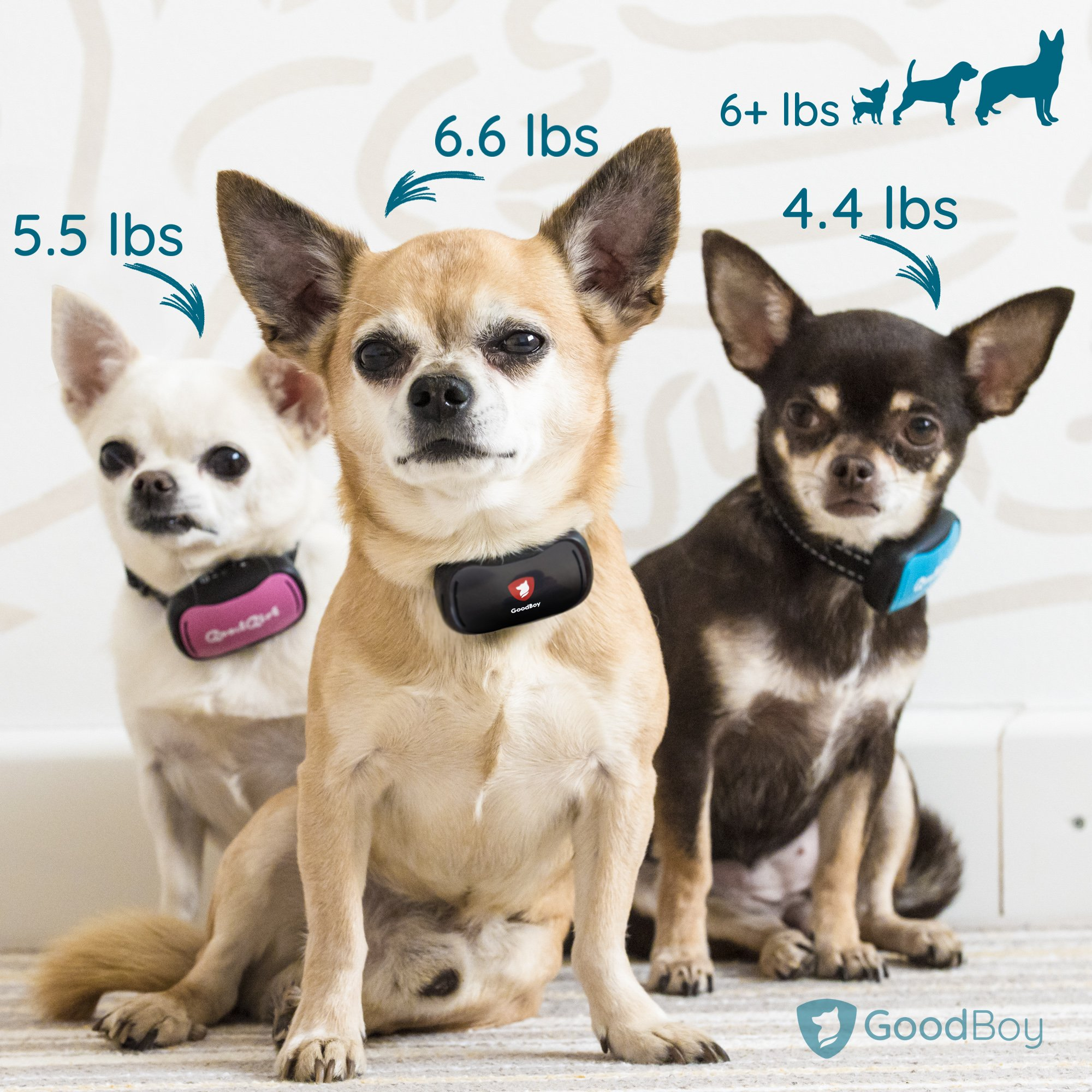 GoodBoy Small Rechargeable Dog Bark Collar for Tiny to Medium Dogs Waterproof and Vibrating Anti Bark Training Device That is Smallest & Most Safe On Amazon - No Shock No Spiky Prongs! (6+ lbs) by GoodBoy (Image #6)