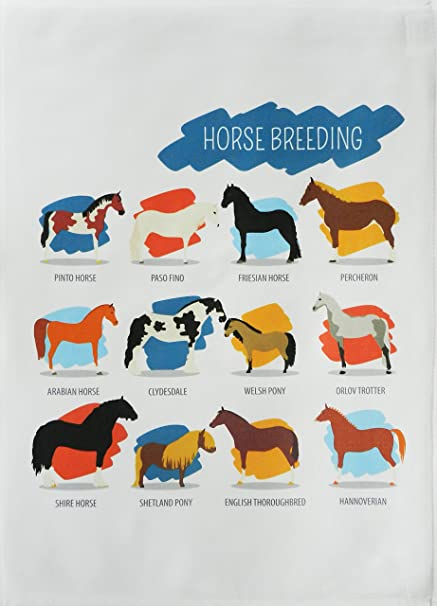 Breeds of Horse -Large Cotton Tea Towel by Half a Donkey. Pasa ...