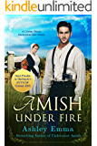Amish Under Fire (Covert Police Detectives Unit Series Book 2)