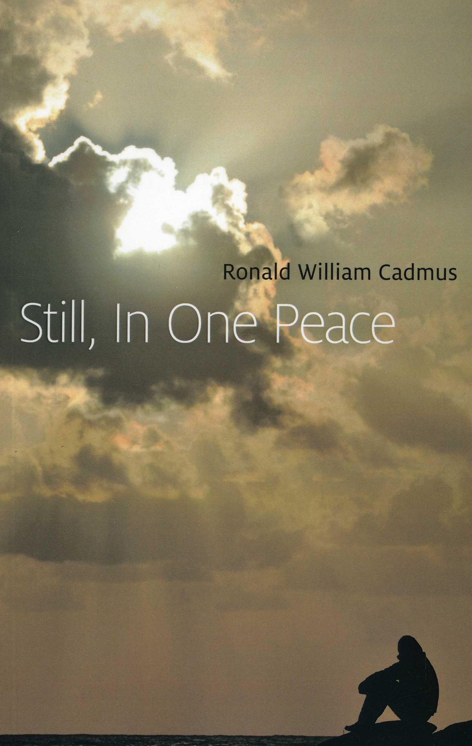 Download Still, In One Peace pdf epub