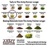 The Army Painter Battlefields, XP - Meadow