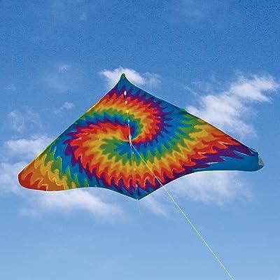 Sky Dye Gayla Trendsetter Delta Kite: Toys & Games
