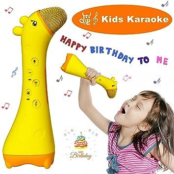0253c0a521a NeWisdom Wireless Magic Sound Kids microphone