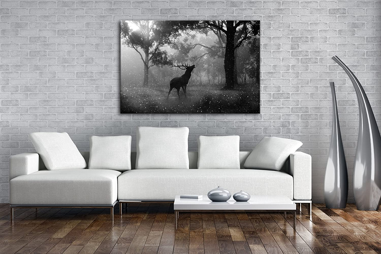 Deyoli einsamer Hirsch im Wald Effekt  Schwarz Schwarz Schwarz Weiß Format  120x80 als Leinwandbild, Motiv fertig gerahmt auf Echtholzrahmen, Hochwertiger Digitaldruck mit Rahmen, Kein Poster oder Plakat cbebb5