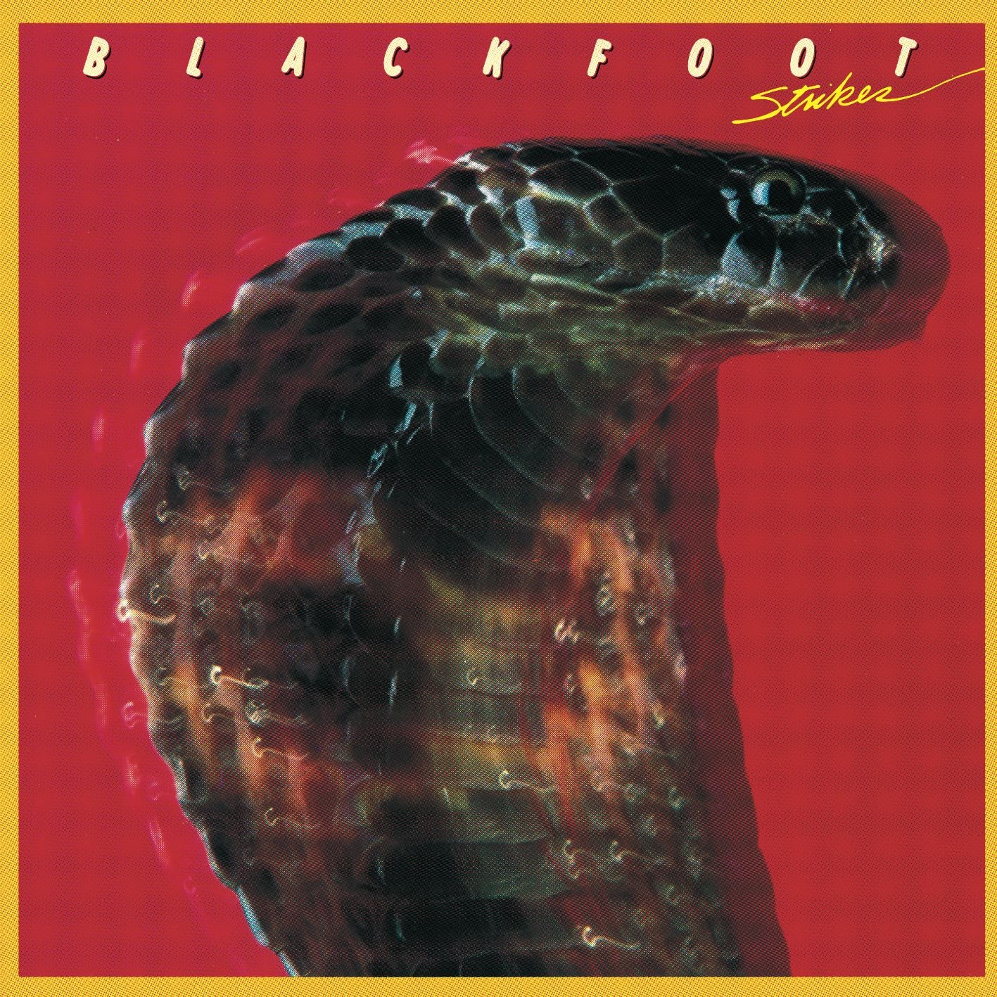"""Résultat de recherche d'images pour """"blackfoot strike"""""""