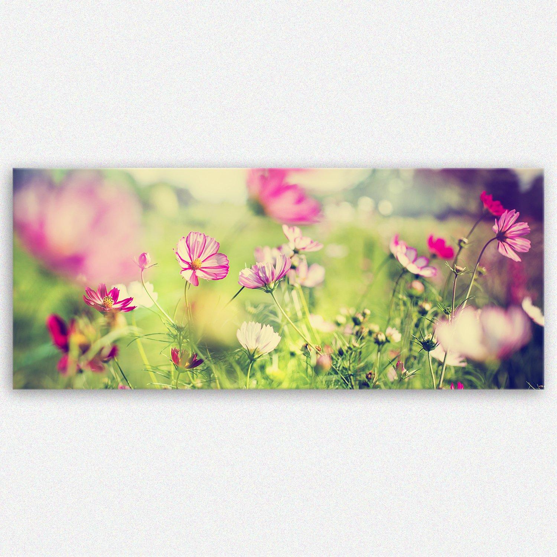 Blumen Bilder: Amazon.de