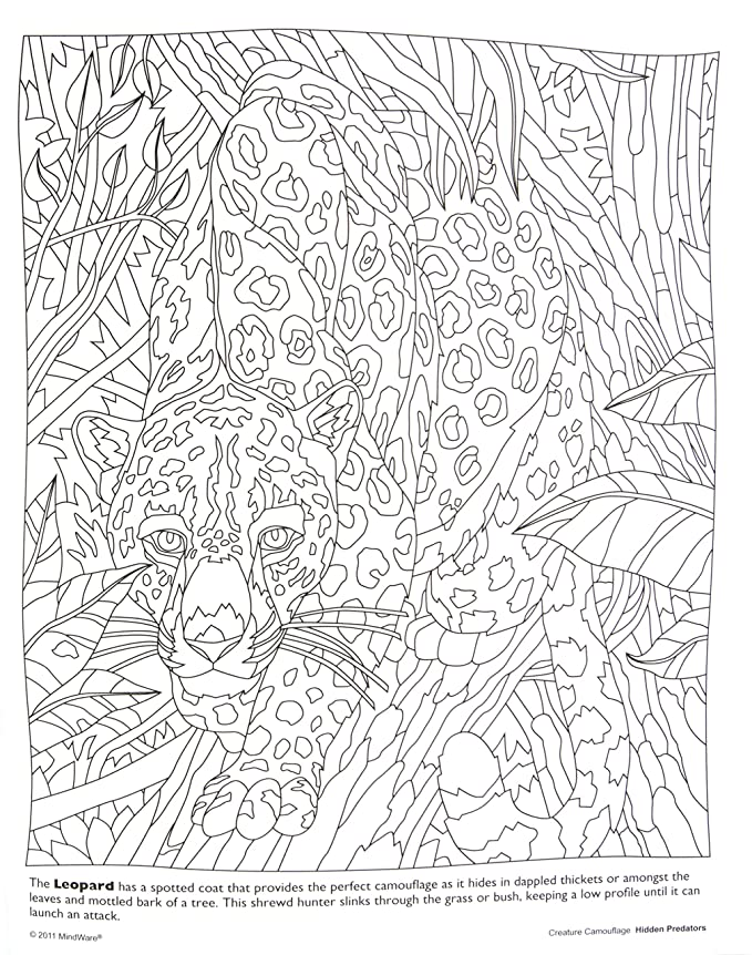 Amazon.com: MindWare – Hidden Predators Creature Camouflage Coloring ...