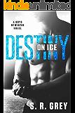 Destiny on Ice (Boys of Winter Book 1) (English Edition)