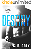 Destiny on Ice (Boys of Winter Book 1) (English Edition)