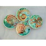 Set of 4 Nautilus Seashell Oversized Cabinet Knobs (Blue)