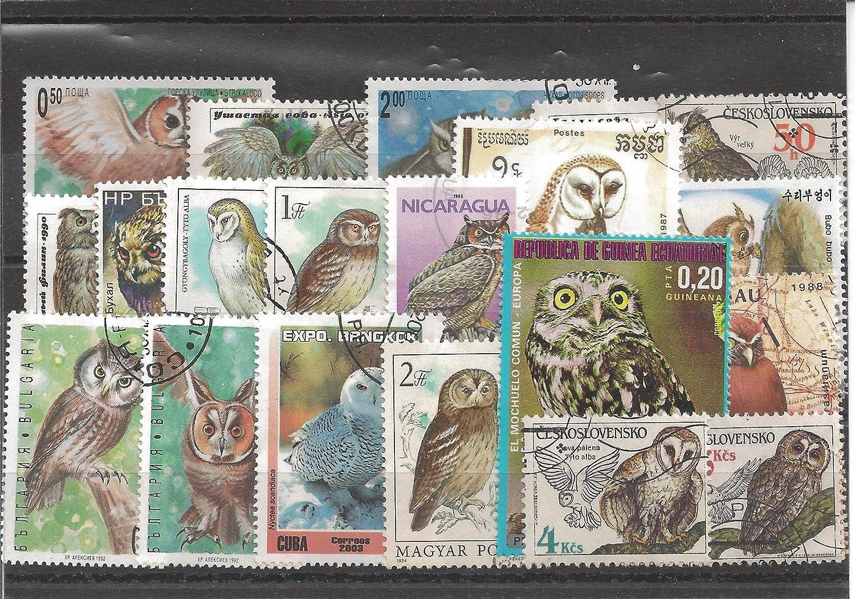 Timbres pour Les collectionneurs Motives 50 diff/érents Oiseaux Timbres Oiseaux
