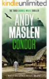 Condor (The Gabriel Wolfe Thrillers Book 3)