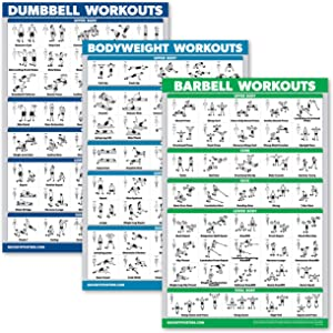QuickFit 3 Pack - Dumbbell Workouts + Bodyweight Exercises + Barbell Routine Poster Set - Set of 3 Workout Charts