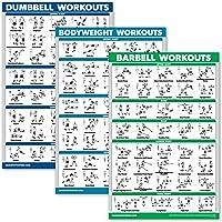 QuickFit 3 stuks - haltertrainingen + lichaamsgewicht oefeningen + Barbell Routine Poster Set - Set van 3…