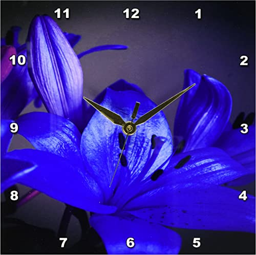 3dRose dpp_29181_1 Gorgeous Blue Lily-Wall Clock, 10 by 10-Inch