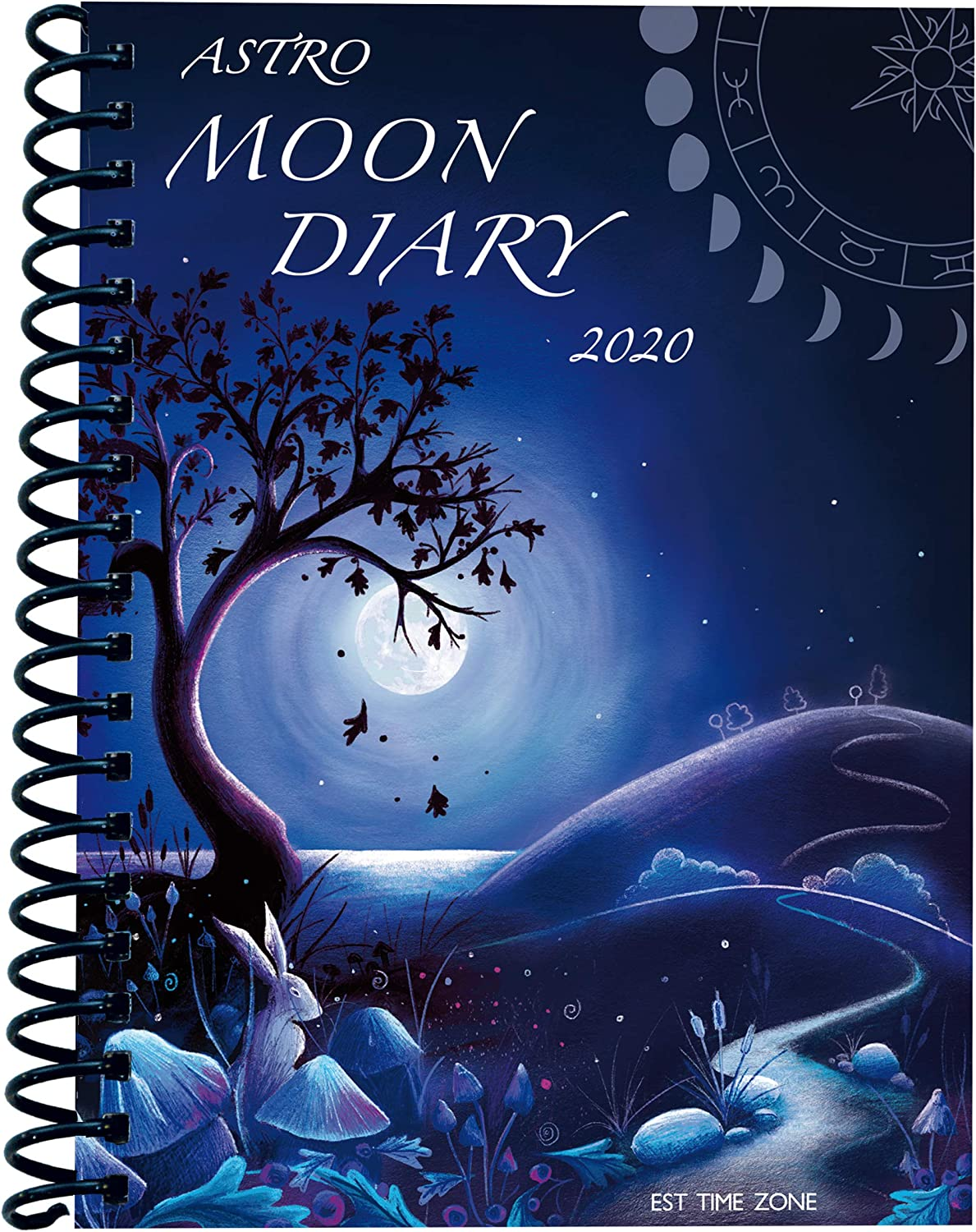 Astro Moon Diary 2020 | The Best 2020 Pagan and Witchy Planners | WitchcraftedLife.com