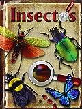 Insectos (Libros Zoom)