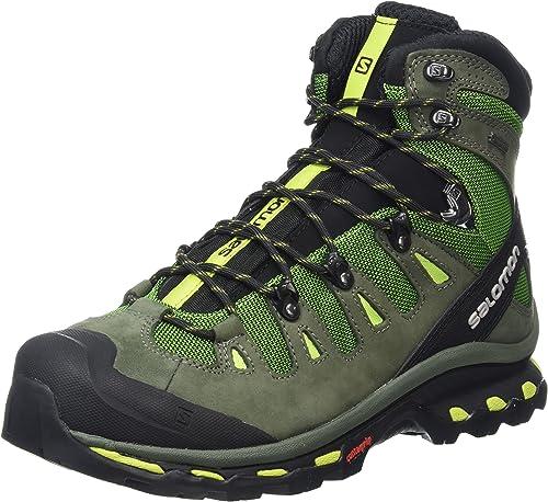 Salomon Men's Quest 4D 2 GTX Hiking Boot (13 D(M) US, Tonic