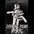 Zombie Moon Rising (A Peter Brannigan Novella)