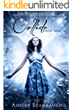 Collide (The Collide Trilogy Book 1)